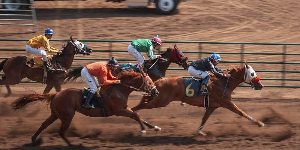 Peraturan pertaruhan kuda dan statistik